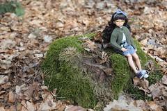 Una pausa en el camino. (Ninotpetrificat) Tags: ruruko petworks azone doll japantoy japandoll toys cute kawaii hobby hipster juguete ramoneras ranma cerdito musgo muñeca bosque wood