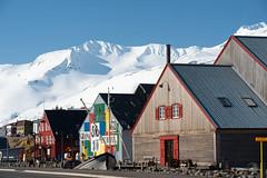 Deplar Farm (elevenexperience) Tags: town iceland siglo