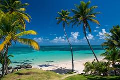 Yemaya Beach, Little Corn Island, Nicaragua. (Flash Parker) Tags: travel winter island nikon photojournalism adventure granada nicaragua caribbean managua nikkor journalism centralamerica d800 2014 cornislands flashparker wwwflashparkercom flashparkerfreelance nicaragua58242