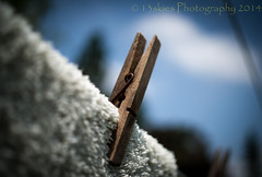 Pinned down (13skies) Tags: clothespin laundry sony towel clothesline sky blue wodden drying day pinned macro close pins clothes dry wind