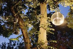 Secret Garden (Martin Krolikowski) Tags: party house 35mm frankfurt museumsufer liebieghaus xe1 fujixe1