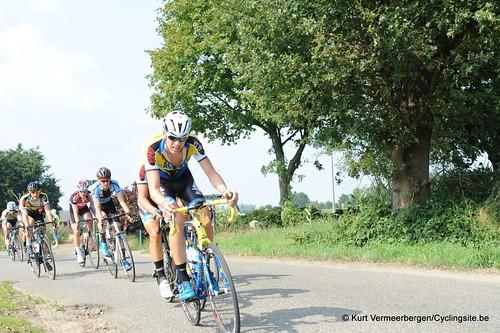 Geel Oosterlo  (106)