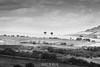 Millau Viaduct (Viaduc de Millau), Aveyron, Midi-Pyrenees, France (Stewart Leiwakabessy) Tags: bridge people blackandwhite bw white black france monochrome architecture river blackwhite high roadtrip structure viaduct pylon cables desaturated grayscale bandw tarn a75 newcar millau viaduc aveyron midipyrenees midipyrénées stewartleiwakabessy viaducdemillau rivertarn cablestayedbridge arcadis michelvirlogeux brianfoster peugeot308 ©stewartleiwakabessy labastidepradines n7roadtrip provence2014