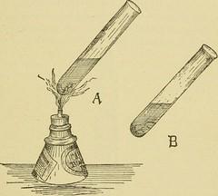 Anglų lietuvių žodynas. Žodis acorn tube reiškia gilė vamzdis lietuviškai.