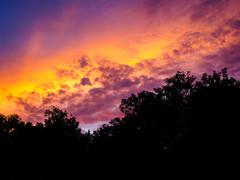 PhoTones Works #5474 (TAKUMA KIMURA) Tags: sunset sun landscape evening twilight scenery natural  setting   kimura  em1    takuma    photones