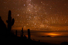 Altiplano Night Sky (rovinglight) Tags: cactus sky fish night giant stars island salt bolivia flats salar biggest altiplano cactii uyuni lpsky isladelpescadoe lpsky2