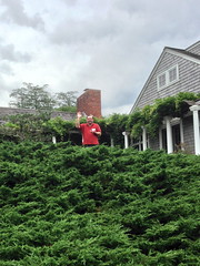 red shirt! (jessamyn) Tags: friends john meetup gameday westport metafilter westportma momu15