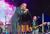 The National at Iveagh Gardens, Dublin on July 18th 2014 by Shaun Neary-04