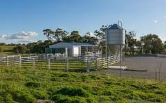 280 Craigs Rd, Run-O-Waters NSW