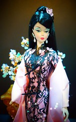 Reflection of Chinese Butterfly (possiblezen) Tags: 3 robert butterfly japanese doll princess no chinese barbie lingerie disney best number pao brunette hua mori mattel qi mulan hanae silkstone bfmc