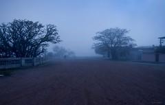 Uruguay en la Niebla IV (Fremdina Beln Bianco) Tags: uruguay cine colonia bianco niebla belen cautiva