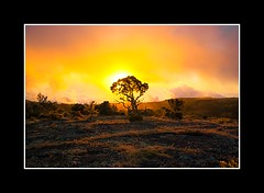 _IGP1186 (cartherpics) Tags: mer sunrise de landscape la soleil ile runion couch maido