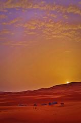 Sunrise over the Sahara Desert (Marianne Reger) Tags: red sahara sunrise trek sand desert camel