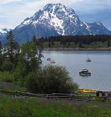 Teton scenic... Jackson Lake (al-ien) Tags: lake wyoming teton grandtetonnationalpark jacksonlake