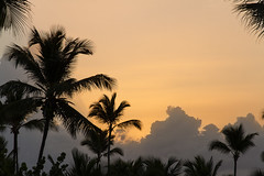 Dominicaanse Republiek (Mark Sekuur) Tags: sunset sun clouds cloudy wolken palmtree puntacana palmboom dominicaanserepubliek bávaro caribisch laaltagracia