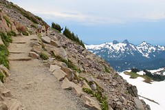Skyline Trail, Mount Rainier National Park (daveynin) Tags: mountain skyline cloudy nps sightseeing trail mountrainier hikers skylinetrail top252014runnerup deaftalent deafoutsidetalent deafoutdoortalent