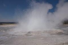 DSC08827 (sylviagreve) Tags: unitedstates yellowstonenationalpark yellowstone wyoming 2013