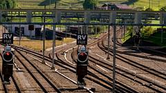 weder vorwrts noch rckwrts (Thomas Neuhaus) Tags: bahnhof rv reversing gleis halt frutigen eisenbahnsignal hauptsignal signalsystemn lstschberg rvhalt fhrerstandsignalisiereung