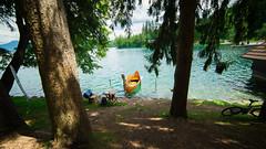 #129 (ekidreki) Tags: trip travel blue trees summer lake holiday tree green water project boat nikon europe angle 14 wide wideangle slovenia bark bled 365 balkans ultra catchy balkan d610 97a ultrawideangle 14mm 14mm28 samyang 112a