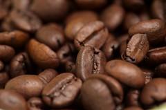 Coffee Beans (koffeespace) Tags: food white macro coffee unitedstates maryland 2007 coffeebeans takenbyjeffkubina 200709 takingbyjeffkubina