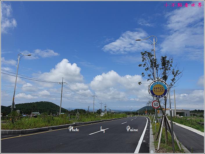 濟州島innisfree館 綠茶博物館 (3).JPG