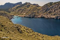 Camino del cap de formentor. Mallorca (Aitivamon NATURE) Tags: cabo camino playa cap mallorca cala platja baleares formentor balears majorica