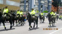Caminata Solidaridad 2014 (johnYusunguaira) Tags: city people festival caballos colombia fiesta bogot police ciudad desfile evento urbano policia calles cabalgata artecallejero caminatasolidaridad2014