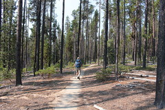 Let's go hiking (rozoneill) Tags: lake mountains oregon forest pacific hiking crest crescent trail national pct cascade willamette umpqua deshutes wsweekly101