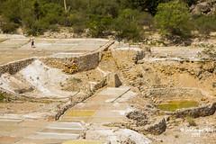 Las Salinas Grandes - Zapotitln de Salinas - Puebla - Mxico ( Reserva de la Biosfera Tehuacn - Cuicatln  ) (Luis Enrique Gmez Snchez) Tags: mxico mexique puebla messico reservadelabiosfera  tehuacn  tehuacncuicatln sanjuanraya  luisenriquegmezsnchez  canont3i zapotitlndesalinas reservadelabiosferatehuacncuicatln