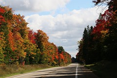 #84 Fall Colors, Upper Peninsula of Michigan Style, Photo by Wes (wesbird72) Tags: up michigan peninsula upper yupper upperpeninsula point fish white whitefish whitefishpoint superior lake lakesuperior water cold colder coldest coldwater driftwood boat derelict gravel shore shoreline line sky paradise paradisemichigan
