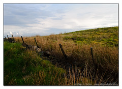 Walking around Stirlingshire (AllegroDigital) Tags: nature field grass fence outside outdoors scotland long stirling stirlingshire kilsyth bannockburn