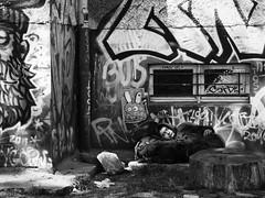 Man, asleep (kohlmann.sascha) Tags: street sleeping people blackandwhite bw plant streetart man tree berlin blancoynegro nature monochrome trash deutschland graffiti log garbage noiretblanc natur pflanze streetphotography menschen uomo treetrunk rubbish mann graffito monochrom waste refuse schlafen schwarzweiss dormir homem müll baum youngman nanna biancoenero homme mensch thema rapaz baumstamm 男人 男子 schwarzweis elhombre jungermann handlung streetfotografie strasenfotografie peopleandgraffiti мужчи́на menschenundgraffiti челове́к
