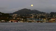 Bay Cruise Moonrise (flythebirdpath~}~}~}) Tags: cruise sunset boat moonrise pontoon baycruise sunsetmoonrise captstew