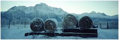 Alaska 02 (misu_1975) Tags: blue winter mountain snow cold alaska 35mm kodak panoramic hasselblad portra xpan 400asa 2frames