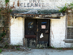 dry cleaners (seeyasherry) Tags: weeds rust peeling paint forgotten abaondoned