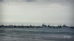 Máncora (aguilar_czar) Tags: beach playa perú r pesca playas pescadores pesquero máncora