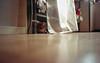 Rat's eye view (Minchioletta) Tags: cat floor gatto brioche olympusxa pavimento ratseyeview shelfunit scaffalatura dmparadies200 analogicait lomographyandvintagecameras