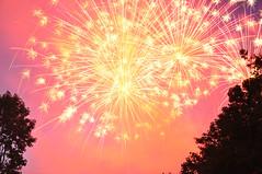 Bellevue Fireworks 2014 (kdobey) Tags: pink sparkles washington nikon fireworks 4th firework wa independence 4thofjuly independenceday bellevue sparkling 4thjuly dobey d90 kdobey bellevuesq