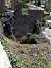 Flower power. (Ia Löfquist) Tags: flower by village ruin kreta crete blomma anatoli