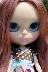 Bella- blue eyes