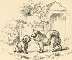 Anglų lietuvių žodynas. Žodis sharp-set reiškia a  labai išalkęs (t. p. prk.) 2 pastatytas smailiuoju kampu/kraštu lietuviškai.