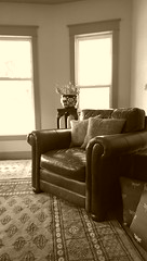Sepia (Kenneth Wesley Earley) Tags: pakistan leather mobile sepia butterfly chair spokane bernhardt livingroom mobilephonecamera spokanewa upholstery leatherchair bokhara handmaderug 99205 bernhardtfurniture htconem8 spokanewa99205