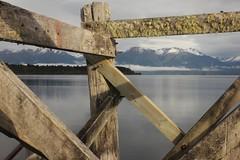 Crazy Lines (Tones Corner) Tags: lake teanau nzscene