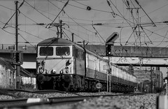 """The AC Locomotive Group's Class 87 no 87002 """"Royal Sovereign""""heads past Newark, Hatchets Lane Foot Crossing on 09-08-2014 with a GBRf Charter from Newcastle to Kings Cross (kevaruka) Tags: uk greatbritain summer england bw sun sexy sunshine weather electric clouds train canon eos blackwhite flickr boobs cloudy unitedkingdom bokeh rail railway sunny trains special 5d british newark railtour frontpage milf britishrail nottinghamshire charter eastcoast sunnyday eastcoastmainline cloudyday ecml networkrail royalsovereign class87 newarknorthgate railnetwork aclocomotivegroup 87002 canon5dmk3 railcharter 5dmk3 5d3 5diii canoneos5dmk3 newarkdiamondcrossing hatchetslane hatchetslanecrossing ilobsterit"""