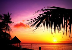 Endress Summer (tropicalisland045) Tags: sunset sea beach evening     saipan settingsun