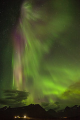 In Faskrudsfjordur tonight (*Jonina*) Tags: iceland ísland faskrudsfjordur fáskrúðsfjörður auroraborealis northernlights norðurljós night nótt sky himinn longexposure jónínaguðrúnóskarsdóttir september1st2014 50faves 7000views 29000views 66000views 76000views 114000views 182000faves 241000views 243000views 244000views