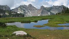 Mother Mountain from Spray Park (Mike Dole) Tags: cascades washingtonstate observationrock mtrainiernationalpark spraypark