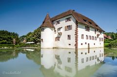 Wasserschloss Inzlingen 2014 (Michael_H.) Tags: park reflection castle water 30 landscape deutschland photo nice nikon eau wasser cityhall ngc wiese haus nd architektur ufer schloss ra