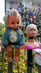 Alternative Doll Universe -TOPW Does Leslieville