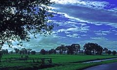 Green, white & blue . .  (Meadows in Holland) (Eduard van Bergen) Tags: road morning blue trees cloud sun white holland green water colors dutch clouds point rising dawn gates horizon flight perspective meadows fences september vista polder 2008 bas pays lek niederlande streefkerk tiendweg ammers ventweg